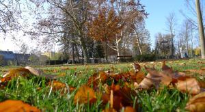 Podzimní Litovel