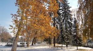 Park pod sněhem