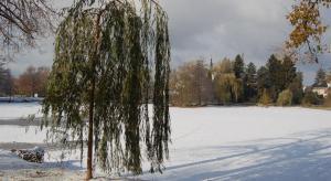 Zasněžený rybník