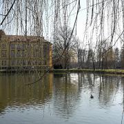 20160317 100645, autor: Šnoflák Milan